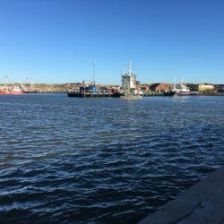 Uddybning af Nordhavn på Hvide Sande Havn